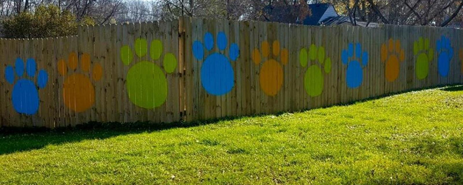 Doggy Day care and boarding facility fence